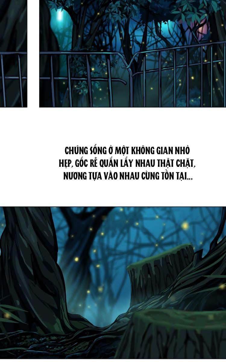Đằng Nữ: Chapter 4